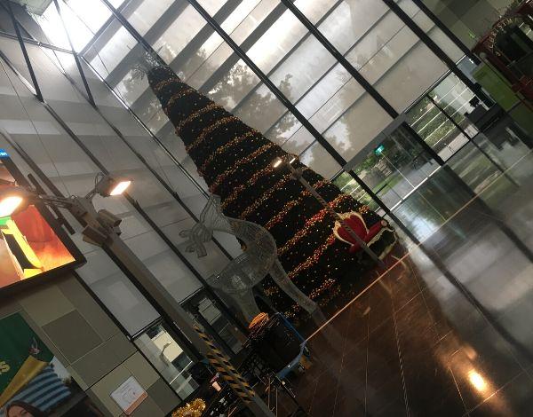 SVSR-Crane for christmas